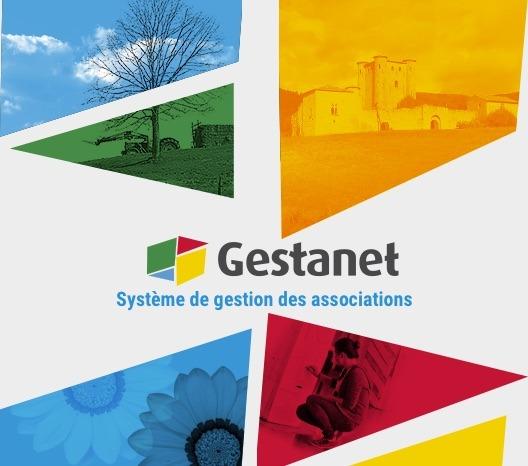 Groupe de travail GESTANET 17 mars 2020